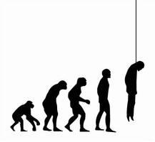 d-evolution by ledfight