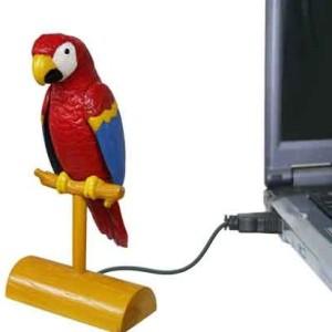 rabidparrots's Profile Picture