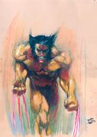 Wolverine attacks by RodReis