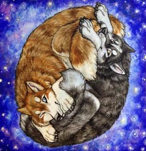 Goodnight Huskies