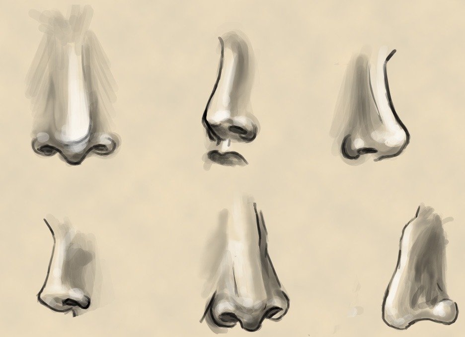 how to draw dainty noses