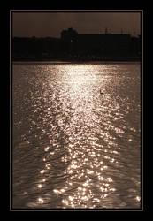 Swan at Sunset by Nadia1956
