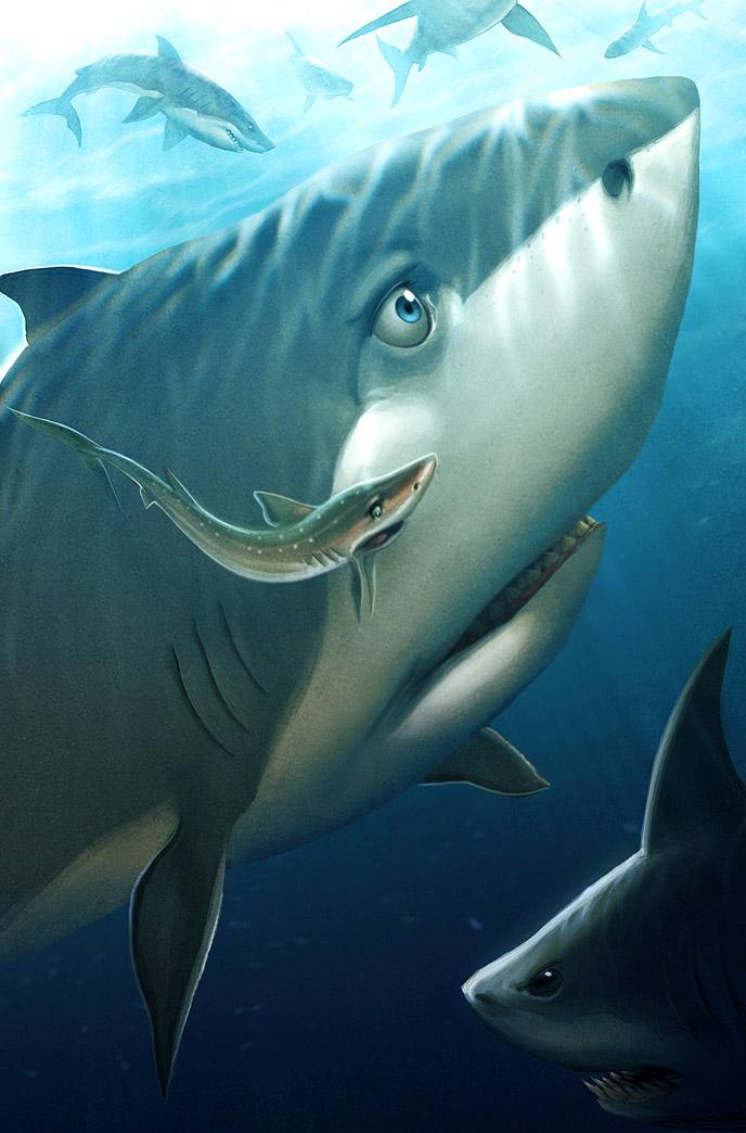 Sharks by JPRart
