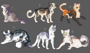 [ota] cat adoptables batch | closed