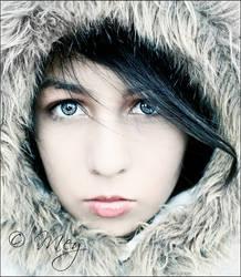 it's getting cold by meyrembulucek