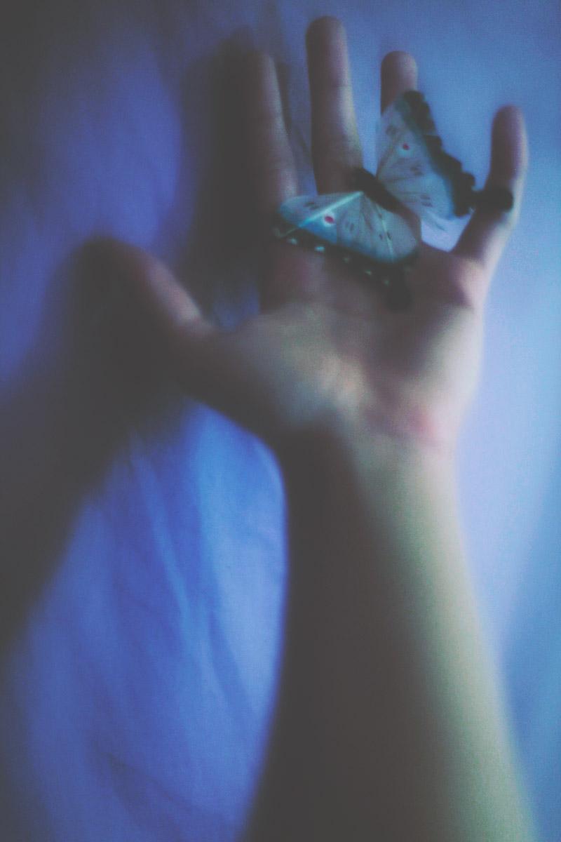 butterfly by meyrembulucek