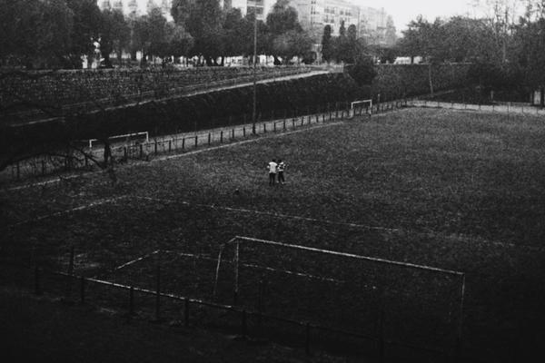 field of innocence by meyrembulucek