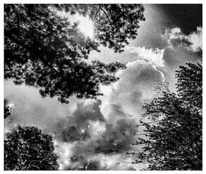 Cloudy Moody Morning Light by morningstarskid
