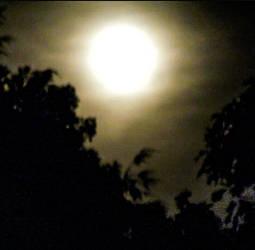 Full Moon-Super Moon by morningstarskid