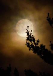 Full Moon by morningstarskid
