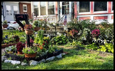 Garden Front Yard