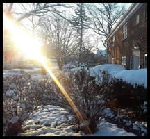 Good Morning Light Ii