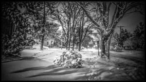 Snow Scene ....Street Lights