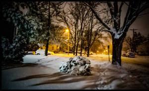 Golden Snow Storm Sight
