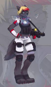 Fleki gun