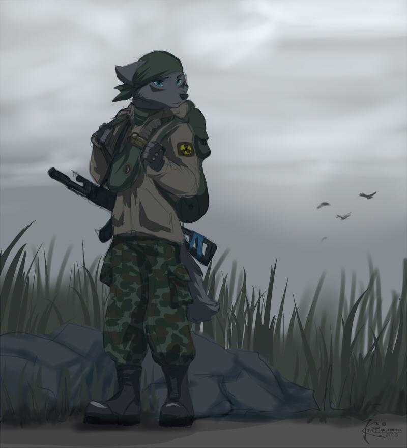 Strelok by 2078