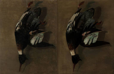 Franklin Brownell Master Study