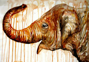 Elephant by yikes190