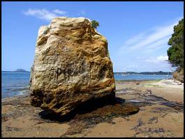 Rocking Omokoroa by eRiQ