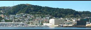 Panorama Wellington by eRiQ