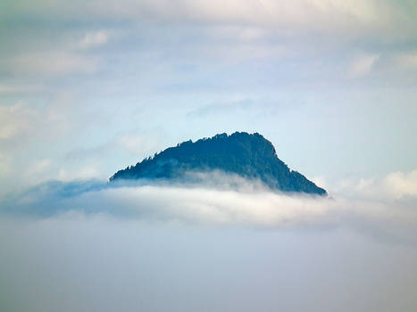 Mount in the Mist 1