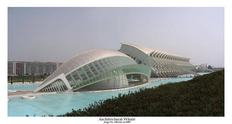 Architectural Whale