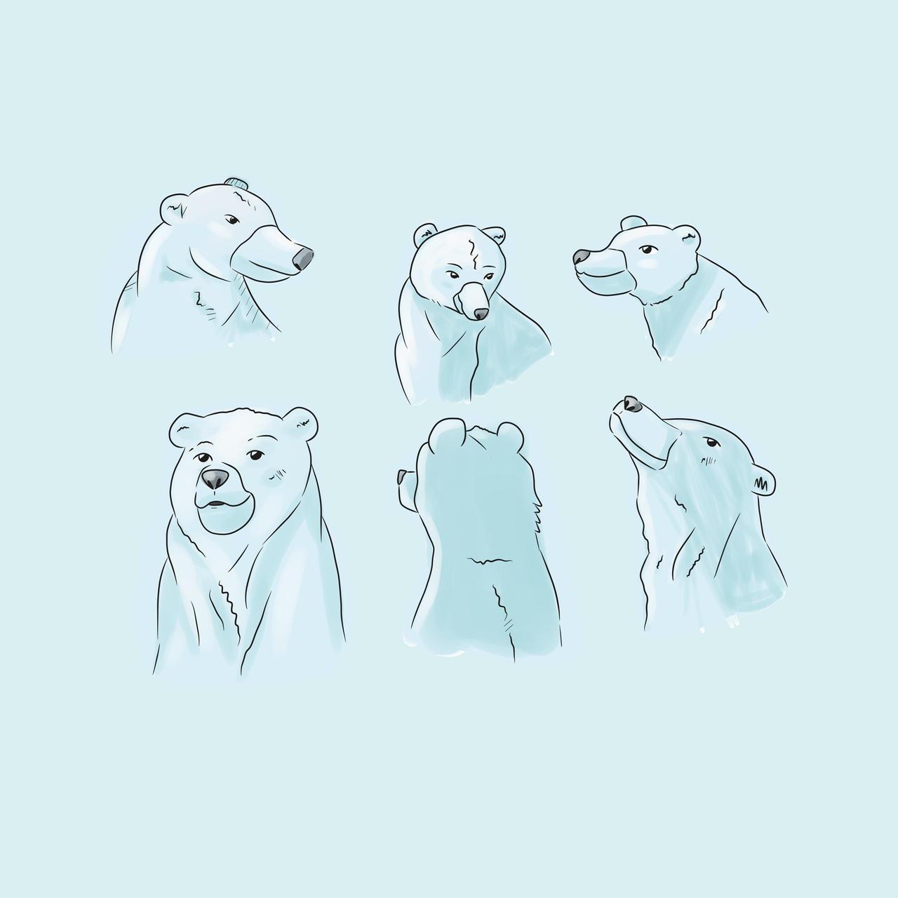 Some bear practice