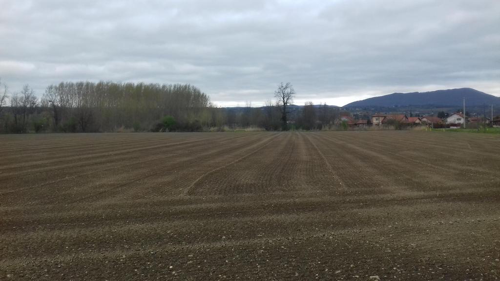 Fields (5) by ColrinP