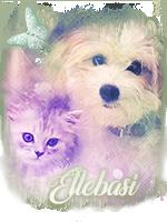 Avatar Ellebasi by Linoa170
