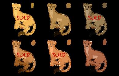 TLK Lioness Design SALES | BATCH 1