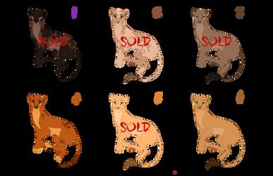 TLK Lioness Design SALES | BATCH 2