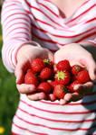 Strawberry Temptation by Citrusfrukt