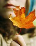 Leaf by Citrusfrukt