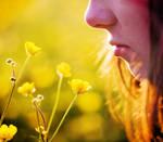 Smell Of Summer by Citrusfrukt