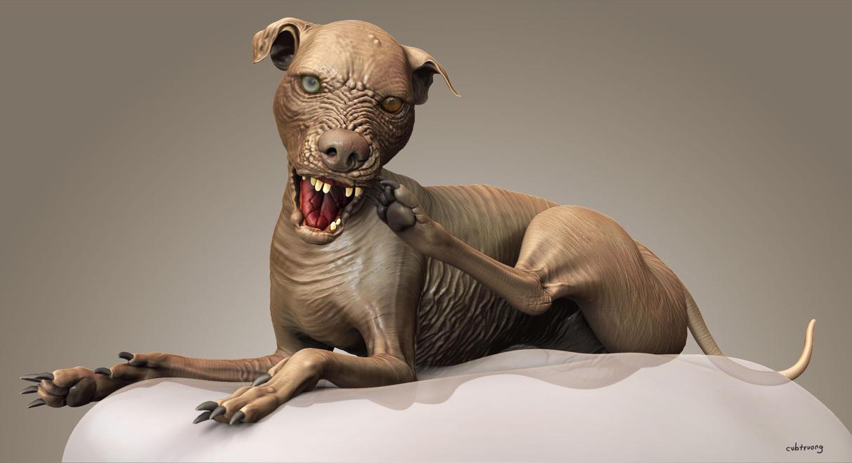 Sam World Ugliest Dog ...