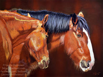 Shire horse and his friend by Hei-La