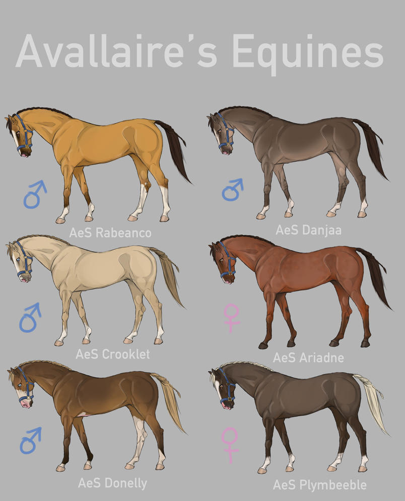 Avallaire's Equines by deeohtee