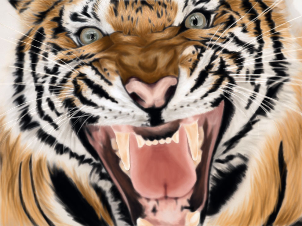 Roaring Tiger by Phabee on DeviantArt - photo#11