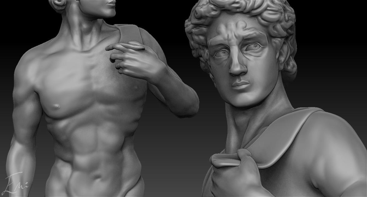 Michelangelo's David - Work in Progress by iemersonrosa