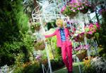 Karneval - The lost garden