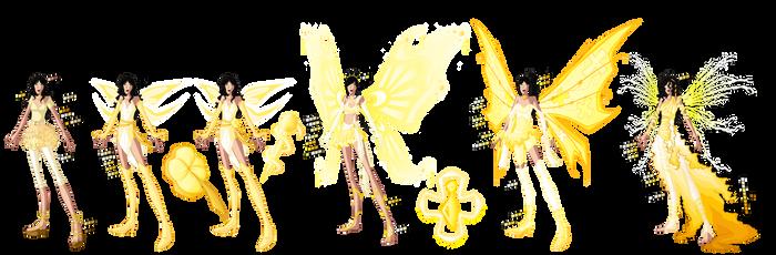 Luz Transformations