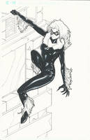 Black Cat Commission by BrianVander