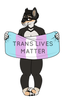 Protect Trans Kids by lynels