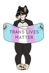 Protect Trans Kids