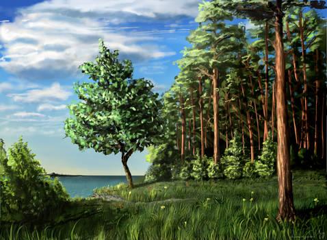 Surskoe Reservoir