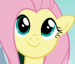 Meme772's Profile Picture