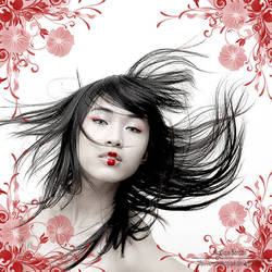 .::geisha::.