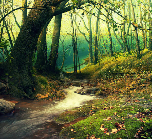 Autumn's riverside by Creamydigital