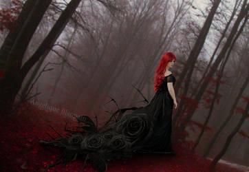 Dark rose by Creamydigital