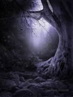 mysterious Forest by Creamydigital
